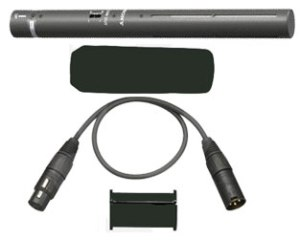 Condensor Sony PD177